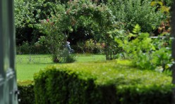 Established Gardens & Grounds